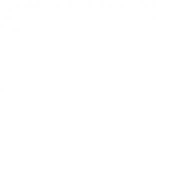 Planchadora Industrial